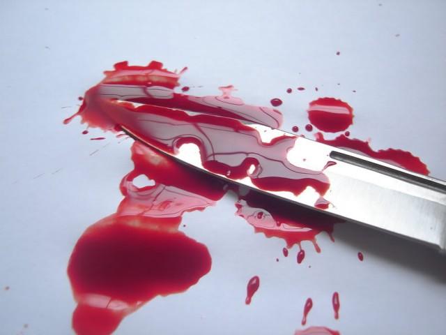 Гражданин Меленок зарезал бывшую супругу ипокончил ссобой